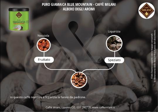 Puro Giamaica Blue Mountain - Albero degli Aromi • Caffè Milani