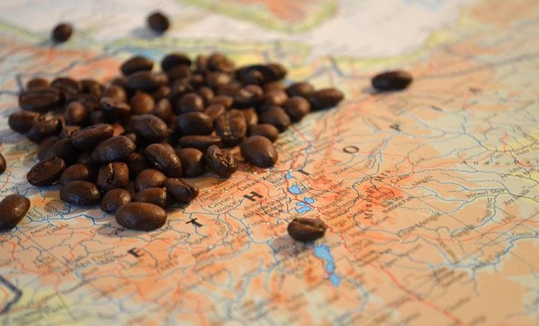 La befana vien di notte… Laila e la piantagione di caffè