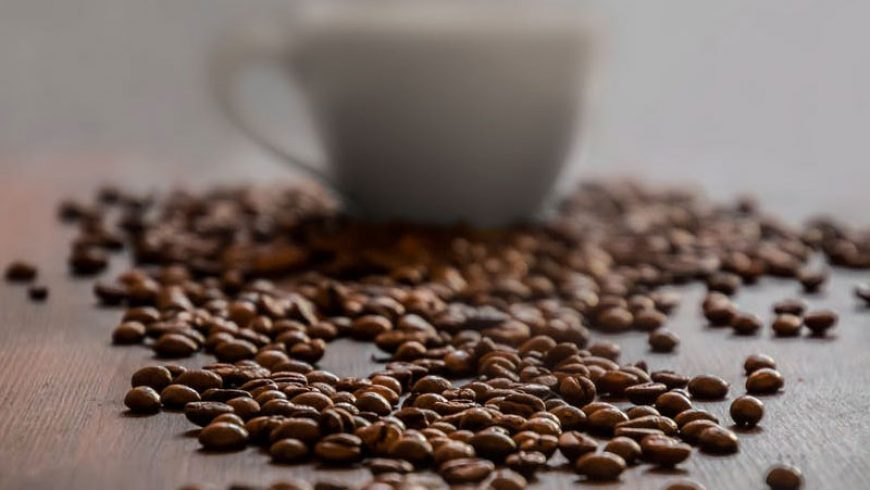 Webinar #1: Il caffe, dal chicco alla tazzina