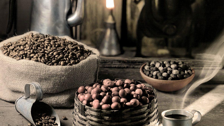 Direzione Brasile: un viaggio nel paradiso del caffè