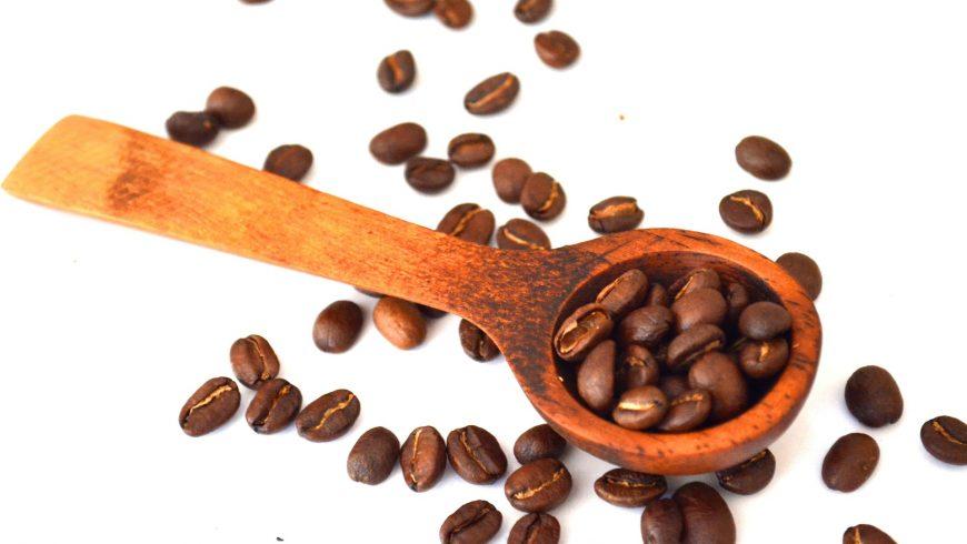 Sulla rotta del caffè: facciamo tappa in Kenya