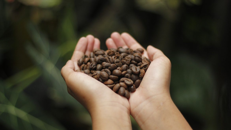 Papua Nuova Guinea: in viaggio tra foreste di caffè e profumi tropicali