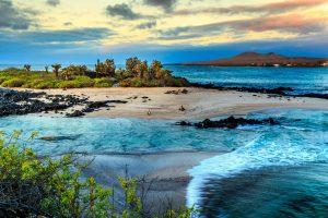Galapagos: in viaggio con Caffè Milani nelle isole delle tartarughe giganti (e non solo)